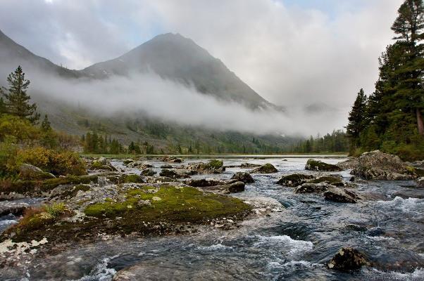 Фотогалерея: По заповедным озерам Алтая. Лето 2019
