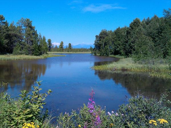 Фотогалерея: Байкал без границ! Лето 2018