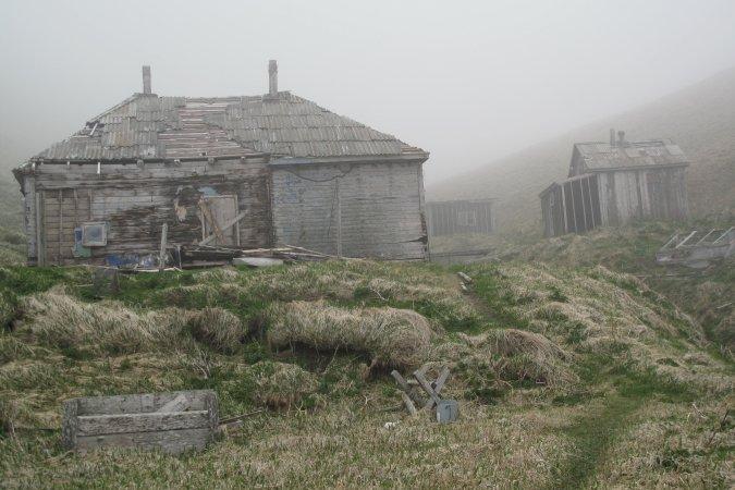 Фотогалерея: Круиз по Камчатке, Командорским островам и Чукотке 14 дн. 2018