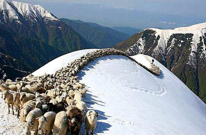 Фотогалерея: Новый год 2020 в Дагестане. NEW!