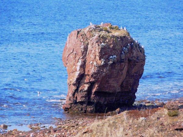 Фотогалерея: Хибины - Белое море Лето 2020г.