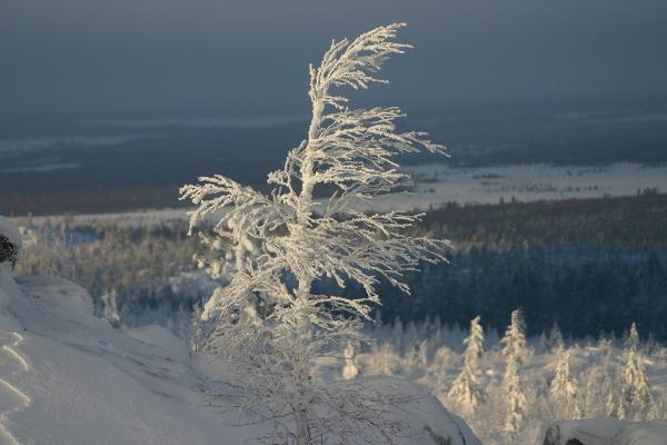 Фотогалерея: От Хибин до Белого моря. Сафари на снегоходах. 2018