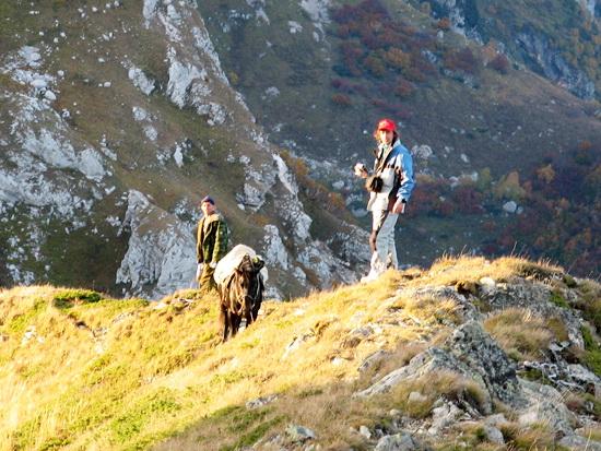 Фотогалерея: Конный поход на Фишт - 5 дней в горах Кавказа 2018