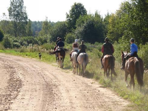 Фотогалерея: Конные экспедиции по Ивановской земле. 12 дней Лето 2021