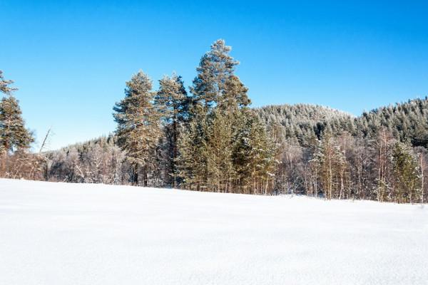 Фотогалерея: Снежный Крака - 5 дней. 2018-2019