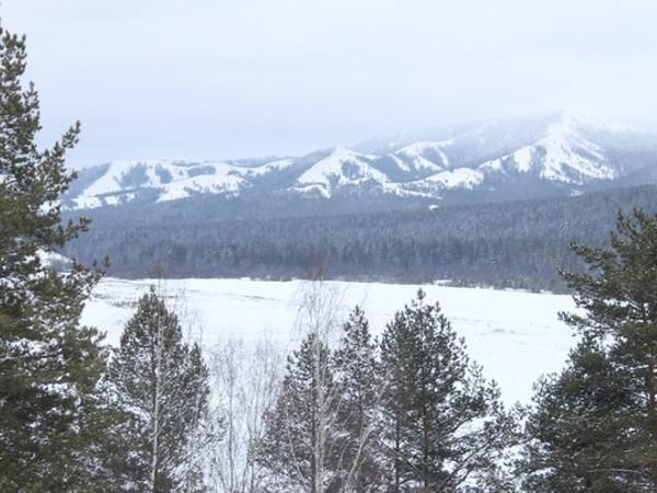 Фотогалерея: Уральский лыжный. 2019