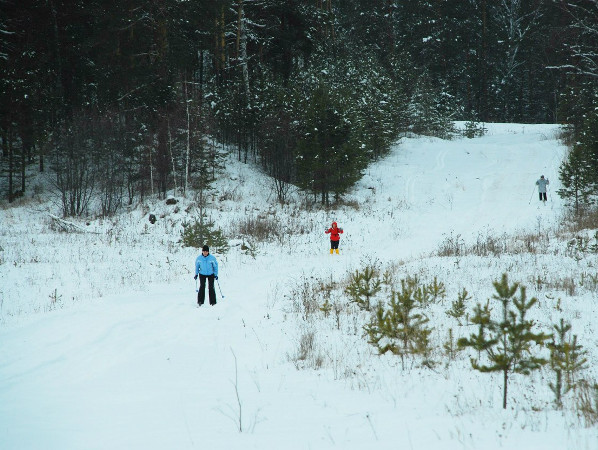 Фотогалерея: Уральский лыжный. 2021