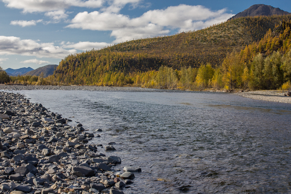 Фотогалерея: Большая рыбалка Якутск - Магадан 2018